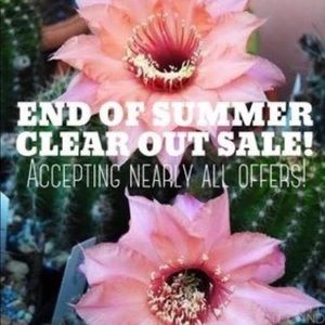Handbags - Everything marked down 30-50%!!!!  Summer Sale!!!